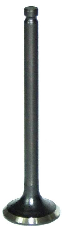Valve, Exhaust EX (M-25-15461)(M-00-1505)